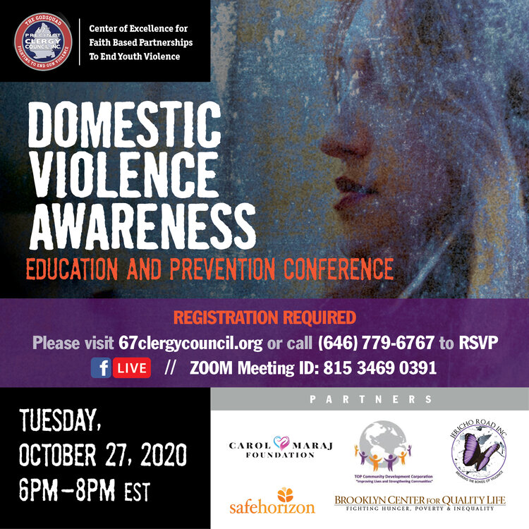 Domestic Violence Conference